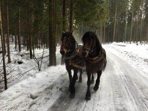 2017-02-18-kulig-zeglarski-w-istebnej-07